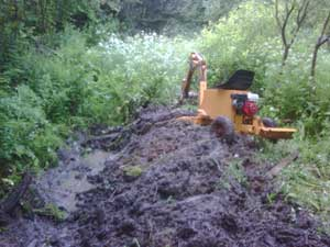 Ditch clearing